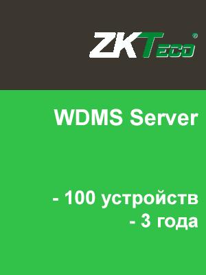 WDMS Server (100 устройств, 3 года)